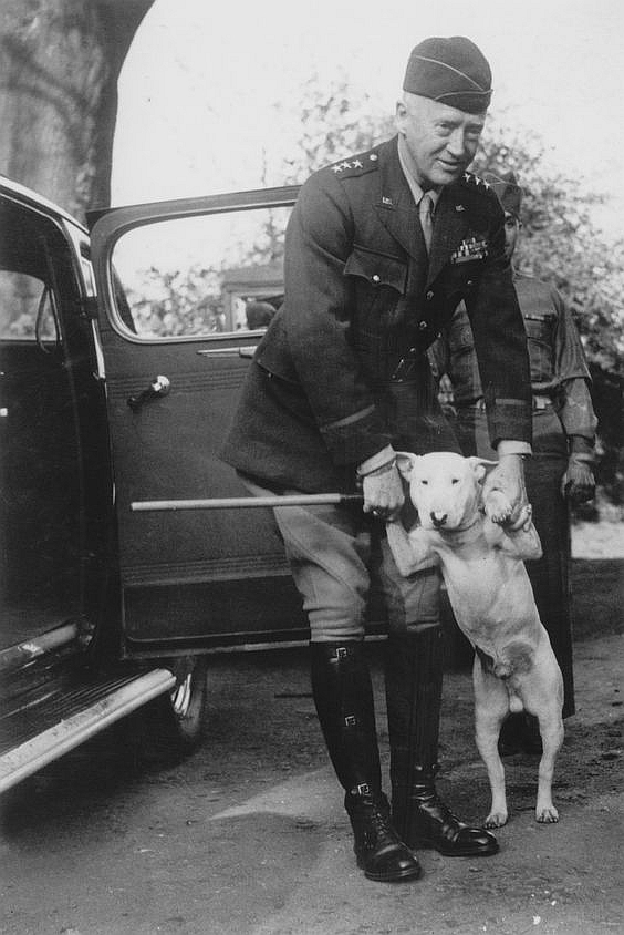 General Patton and his dog, Willie. Also note the famous riding boots.